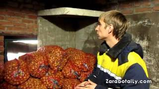 видео Как правильно хранить лук