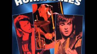 Hurriganes - Bo Diddley (Live 1977)
