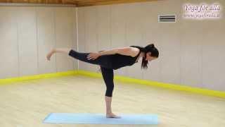 Yoga för alla - Teknik - Krigare C
