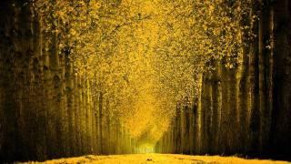 Zeds Dead - Journey Of A Lifetime [HD]