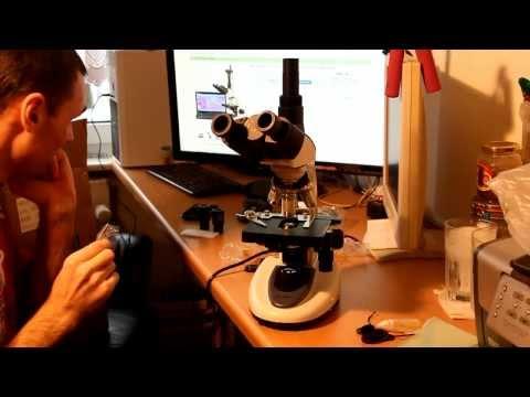 Микроскоп 40X-2500X 10MP цифровая камера. Покупка и Распаковка...