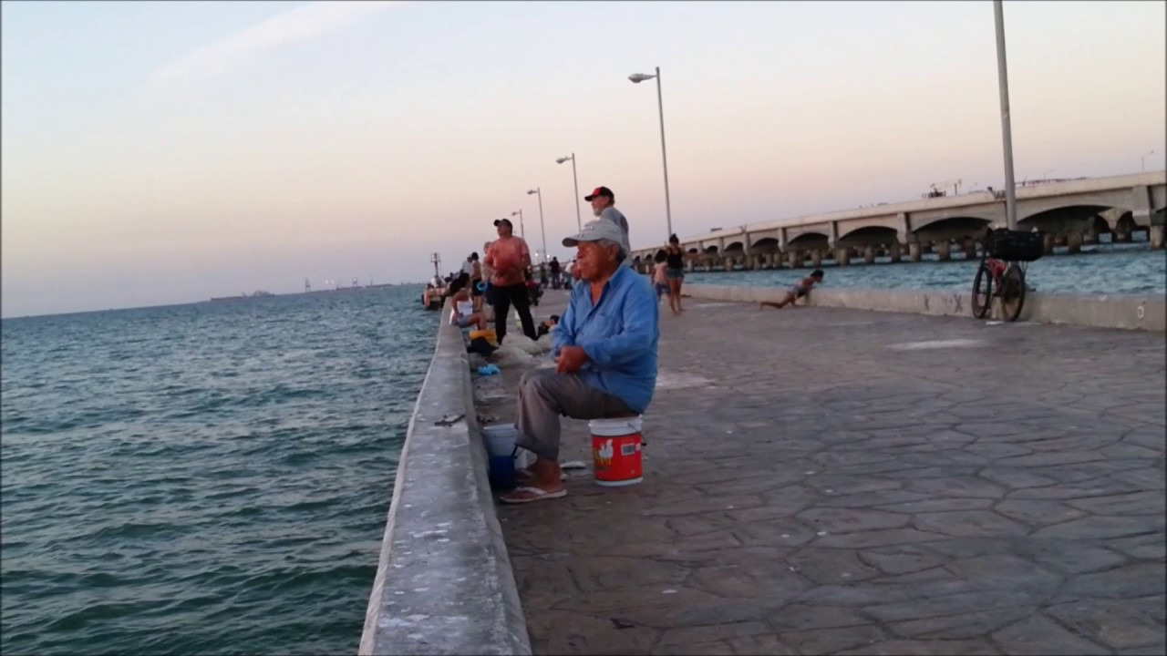 Fishing on the pier in progreso yucat n mexico youtube for Mexico fishing license