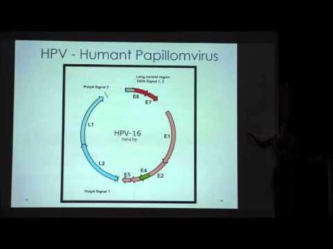 Friskare utan vaccin? Ann-Charlotte Stewart Del 3