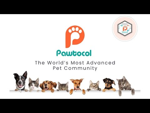Pawtocol – $UPI – The World's Most Advanced Pet Community On The Blockchain.