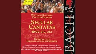 "Mer hahn en neue Oberkeet, BWV 212, ""Peasant Cantata"": Aria: Dein Wachstum sei fest und lache..."