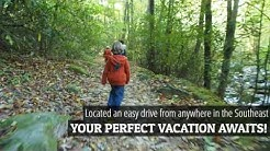 Pilot Cove | Brevard NC | Family | Vacation Rental | Cabin | Airbnb