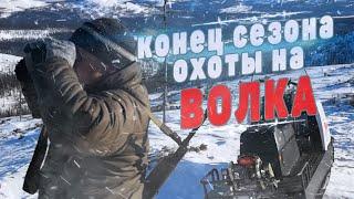 Охота на волка в Якутии видео конец сезона