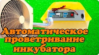Как сделать вентиляцию и проветривание в инкубаторе для яиц. Модернизация инкубатора своими руками.