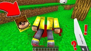 ISMETRG İKİYE BÖLÜNDÜ! 😱 - Minecraft