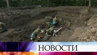 В Ленинградской области обнаружили крупнейшее за последние годы захоронение советских солдат.