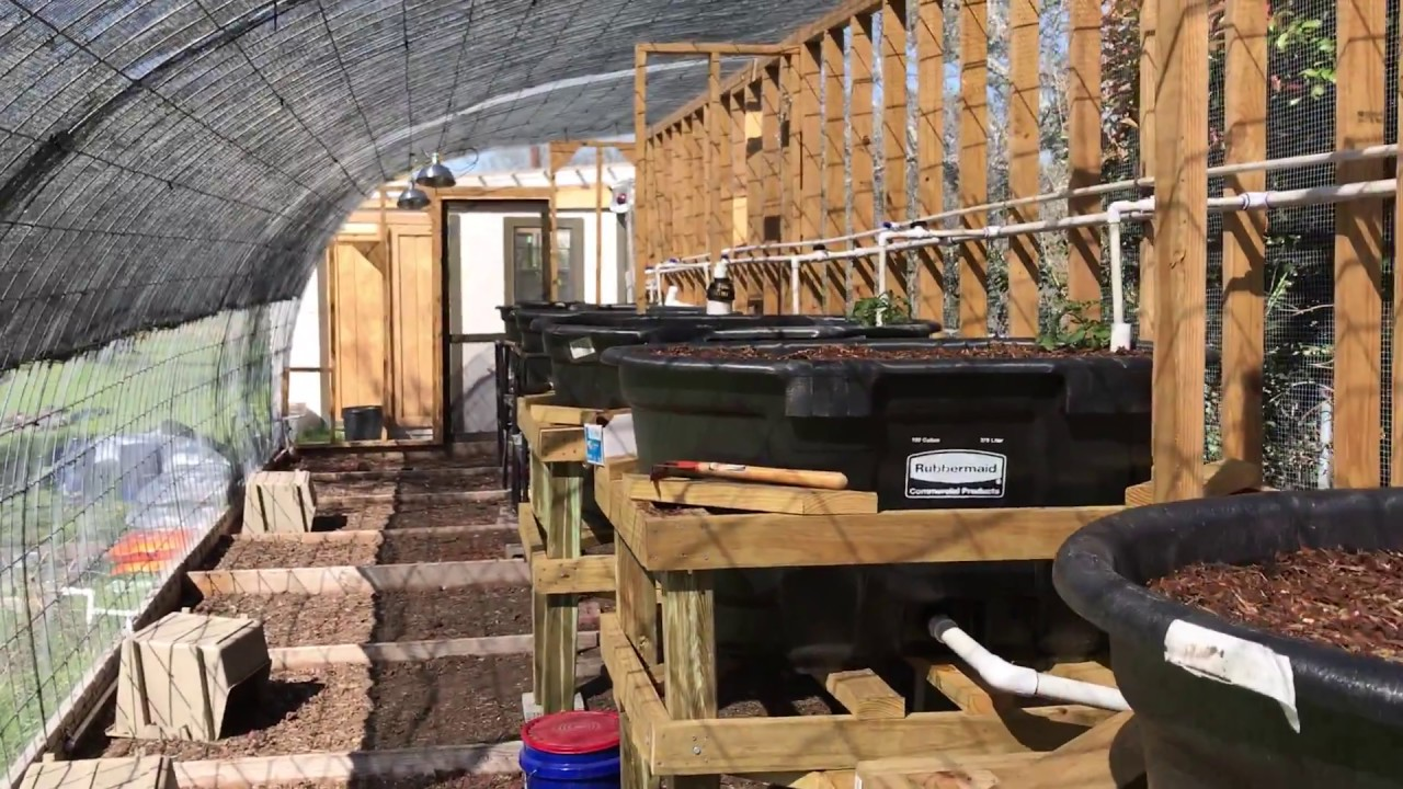 aquaponics wicking beds completed
