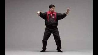 Wu Style Tai Chi Chuan - Vol 4 - 108 Round Form
