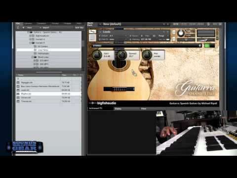 Big Fish Audio Guitarra Spanish Guitar Loop Library - SoundsAndGear