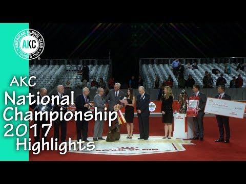 AKC National Championship Highlights 2017