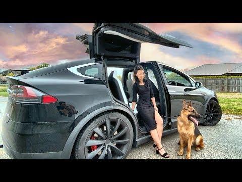 Day in the Life of a German Shepherd - Tesla Road Trip [Part 2]