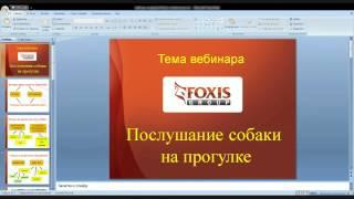 FoxisPet: Что делать, если собака не слушается на прогулке (трейлер)(Полая запись вебинара о том, что делать, если собака не слушается на прогулке: http://foxispet.ru/webinary/zapiswebposlushanie/?utm_me..., 2015-09-26T13:21:46.000Z)