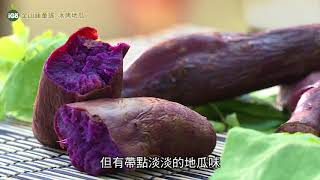 IGO果-金山藷童瑤_冰烤地瓜