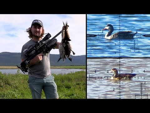 Waterfowl Hunting - Centerfire & Airgun
