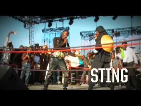 Stream Sting Jamaica Festival [Sting Jamaica Submitted]