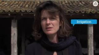 """Emilie Bonnivard : """"L'agriculture, une priorité pour la Région"""""""