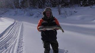 Рыбалка на таежной речке