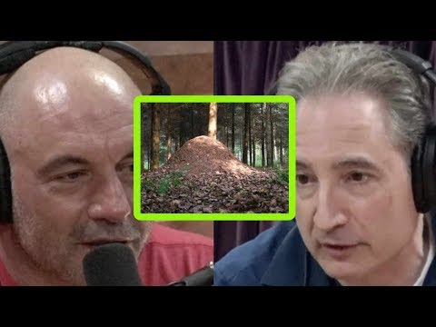 Physicist Brian Greene Has a Theory on Why Aliens Haven't Visited Us