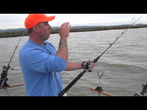 Sturgeon Fishing Tips