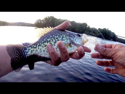 Panfish Fly Fishing & The Brim Fly - 2 VIDEOS!!! 2 HOURS!!!
