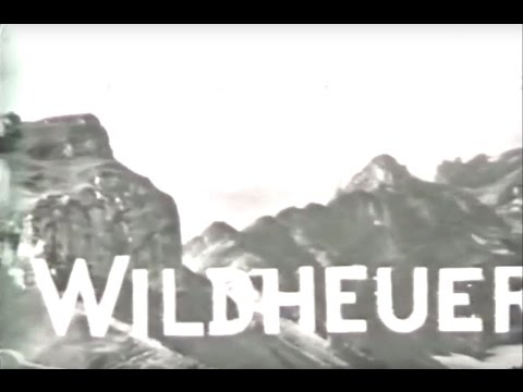 Alpine Haying - Silent documentary about Wildheuen in Switzerland