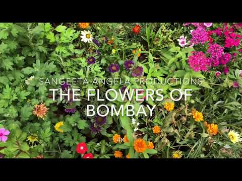 The Flowers of Bombay