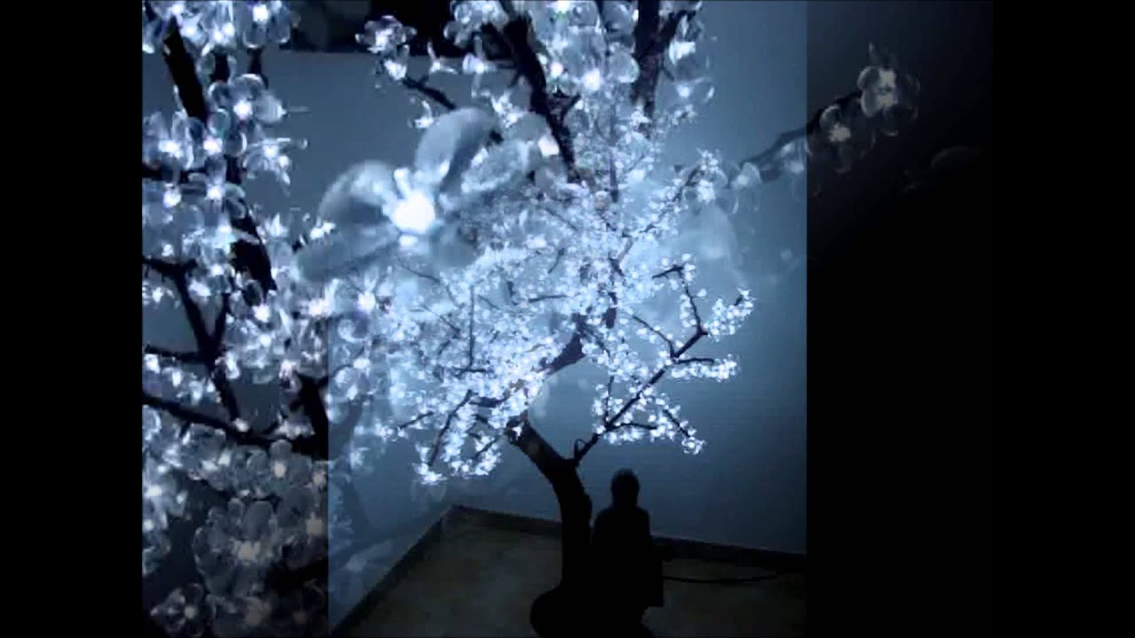 Arbre lumineux youtube - Idee arbre genealogique original ...