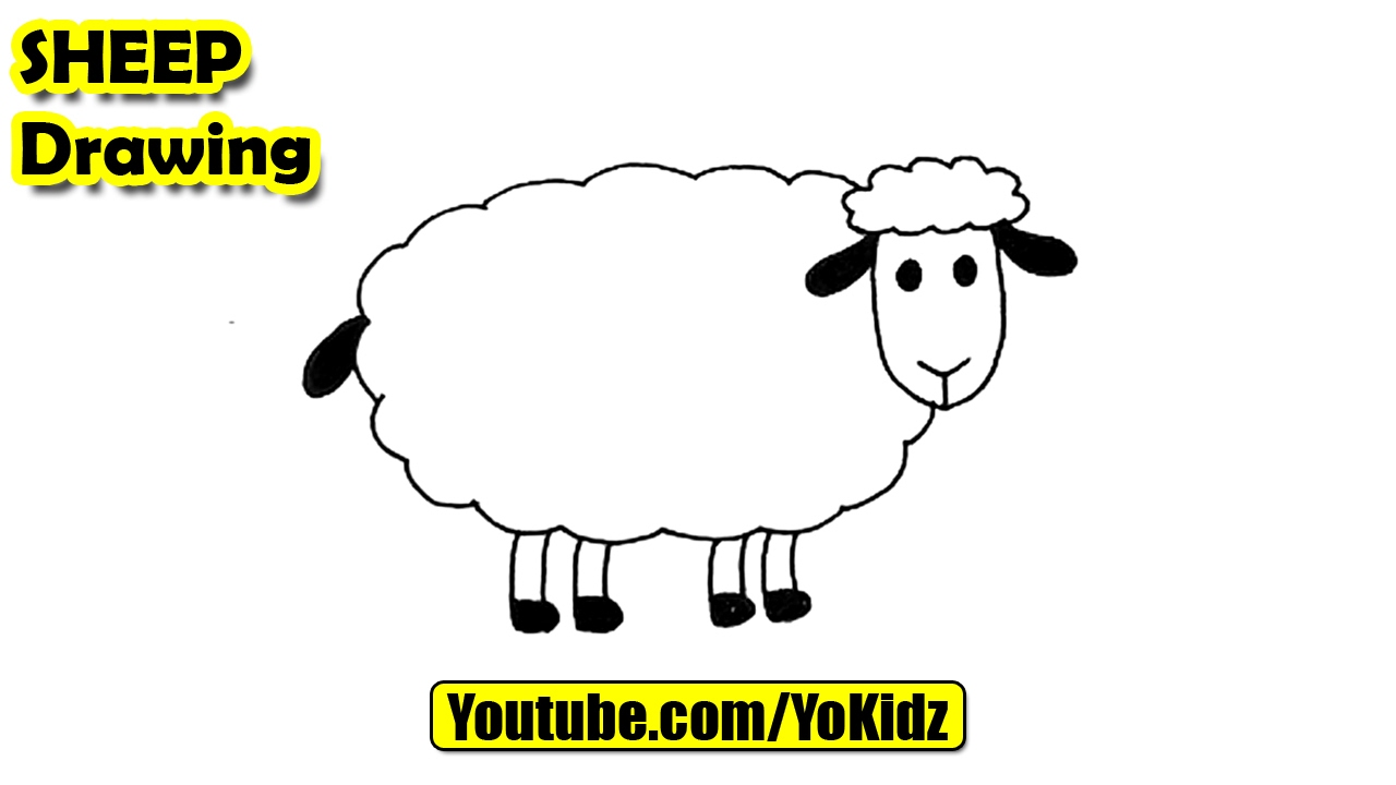 how to draw sheep for kids youtube
