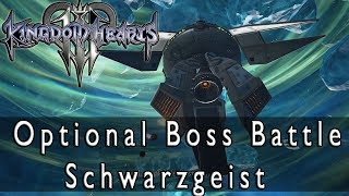 Kingdom Hearts 3 Optional Boss Battle Schwarzgeist, Thermosphere Trophy Guide