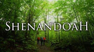 Shenandoah National Park iฑ 4K | Backpacking, Hiking, & Camping Virginia