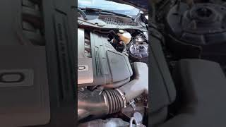 Why I Don't Take The Cover Off My Mustang!!...