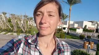 Обзор и отзыв отель Dana Beach Resort ноябрь 2020