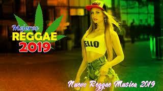 Relajantes Canciones De Reggae Pop 2019  - Los Mejores Exitos De La Música Reggae 2019
