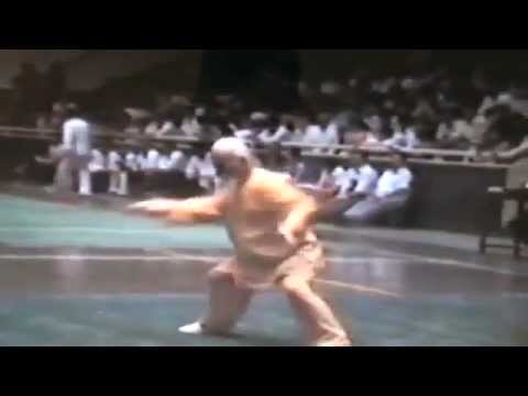 118 yr old Grandmaster (20th degree black belt kung fu) Lu Zijian