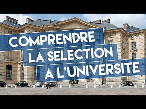 Comprendre la sélection à l'université