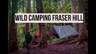 Wild Camping in Fraser Hill (Malaysia)