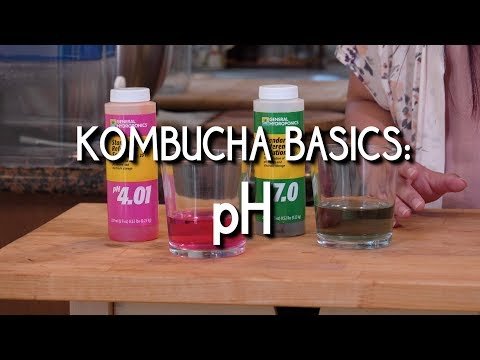 Kombucha Basics  pH