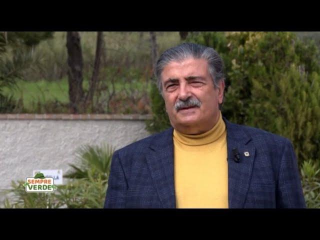 Anna Prete intervista su Rete4 il Prof. Perticone, Direttore Sanitario di Villa Adelchi.
