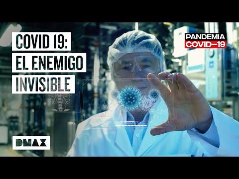 Origen Y Causas De La Pandemia Del Coronavirus