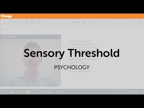 Sensory Threshold | Psychology | Chegg Tutors