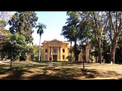Pesquisas com café do Instituto Agronômico de Campinas (IAC) em risco   |   PUC-Campinas