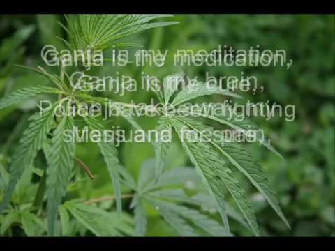 Copy of Bob Marley   Ganja in My Brain with Lyrics