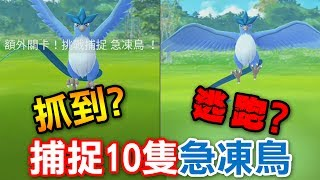 【Pokémon Go】抓到?逃跑?捕捉10隻急凍鳥!