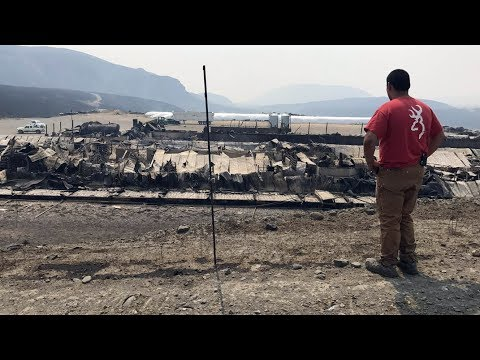 Farmer returns to B.C. dairy farm destroyed by wildfire