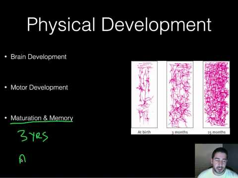 AP Psychology - Developmental - Part 1 - Childhood--Piaget