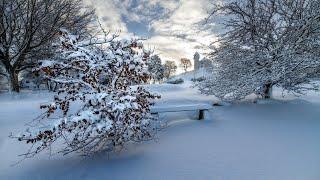 Зимняя сказка / Завораживающие зимние пейзажи ❄️